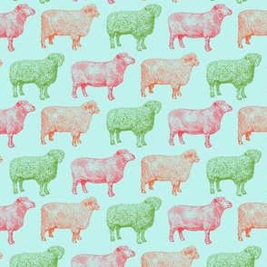 Colorful Sheep on Sky Blue (Small Print)