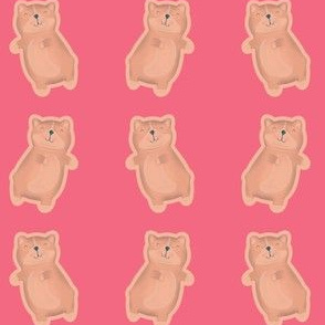 Kawaii Cat Retro Pink (Small Print)