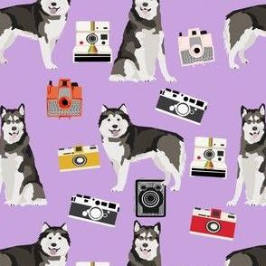 malamute camera fabrics - vintage camera dog design, alaskan malamute fabric  - lavender