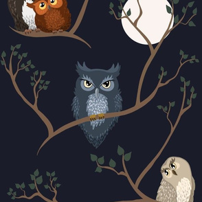Awww Owls (night)