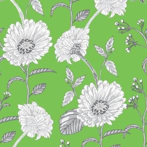 Zinnias (Green)