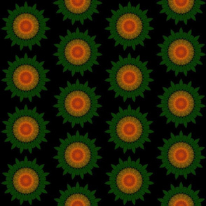 Spirality drawing3