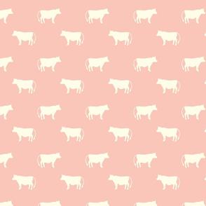 cows coral