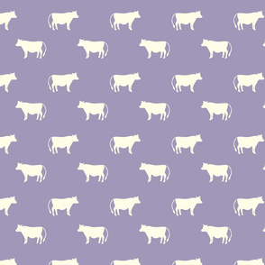 cows purple