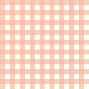 gingham checks coral jpg