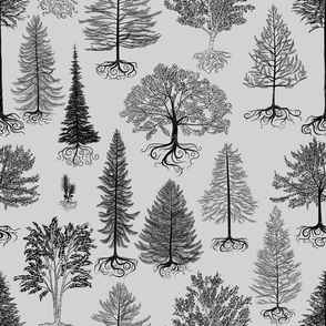 Trees of Canada (Light Grey)