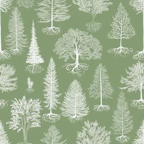 Trees of Canada (Light Green)