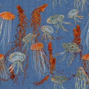 jellyfish_light_blue