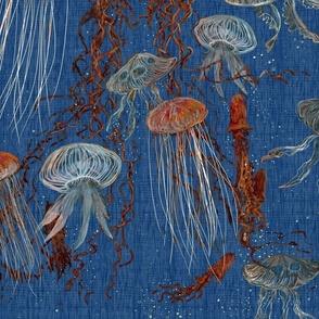 jellyfish_rust_blue