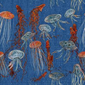 jellyfish_orange_blue