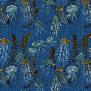 jellyfish_copper_blue