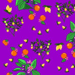 Color Juice
