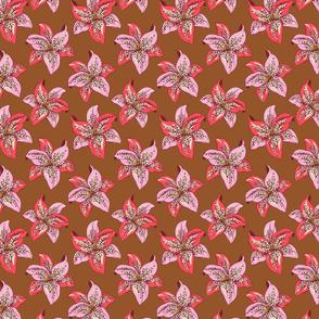 Pinwheel Lily- Caramel-small