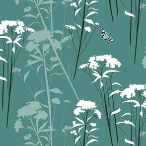 eupatorium flowers teal