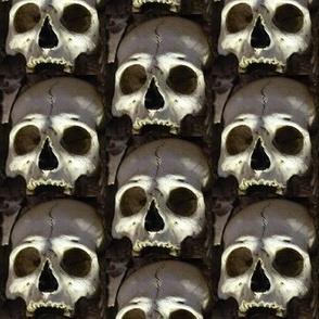 ossuary 5