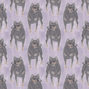 Crayon posing black and tan Shiba Inu sketches - lavender