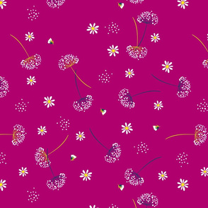 Daisys and Dandelions on Cranberry Background Floral Design
