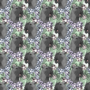 Floral Kerry Blue Terrier portraits