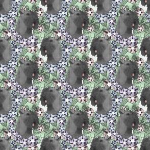Floral Kerry Blue Terrier portraits