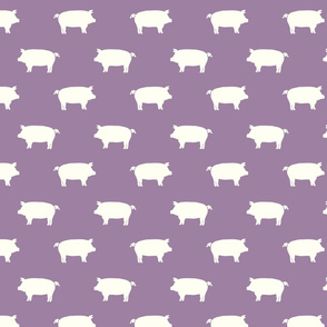 Pigs purple