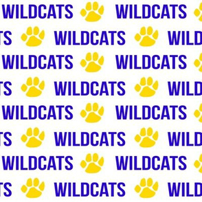 wildcats - blue and yellow