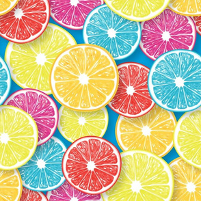 Citrus fruit slices pop art