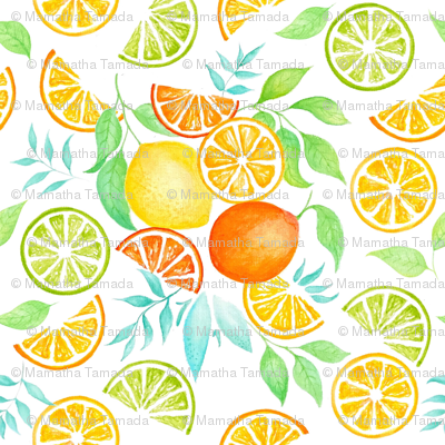 Rrcitrus-water-color_preview