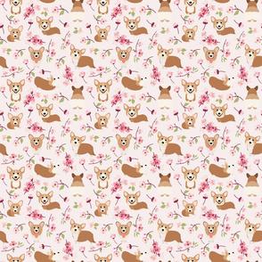 "6"" Corgi in spring florals fabric, cherry blossom sakura in asia, pink"