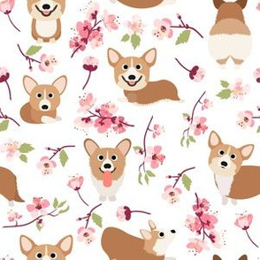 "6"" Corgi in spring florals fabric, cherry blossom sakura in asia, white"