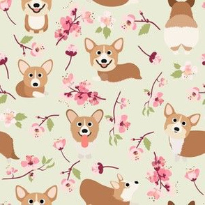 "6"" Corgi in spring florals fabric, cherry blossom sakura in asia , green"