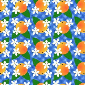 orange blossom pop blue