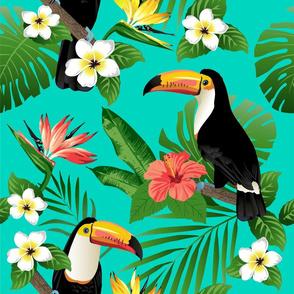 Tucan on Teal Tropical Birds Tropical Plan