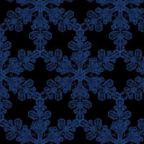 Blue Snowwy Night