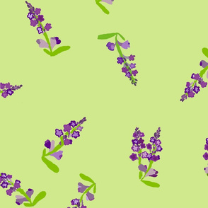 Lavender green background