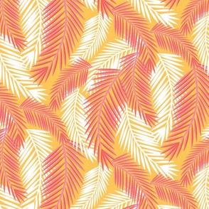 Palm Fronds-Sunshine