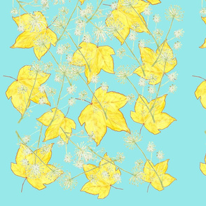 Maple leaf fall on blue