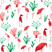 shorebirds in red and green