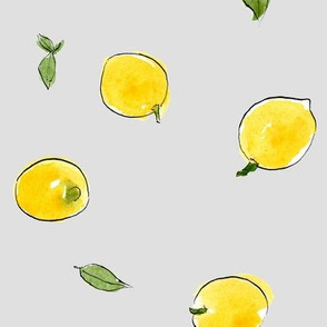 lemons_150dpi_graybgd