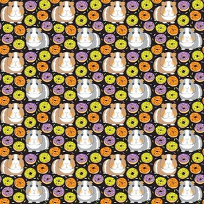 tiny halloween guinea pigs and donuts green purple orange