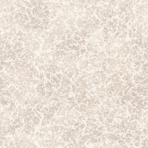 Stone Texture- Neutral