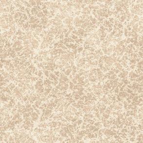 Stone Texture- Sand