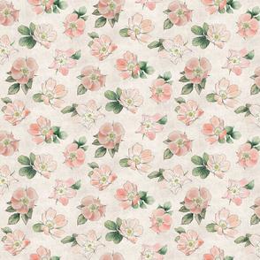 Small Briar Rose Floral blush