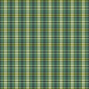 Soothing Celtic Green Plaid - Small Scale