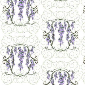 wisteria framed