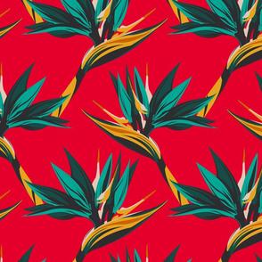 Bird of Paradise II-Red