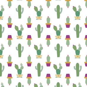 catus pattern