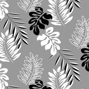 caribbean leafs