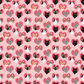 MICRO - love cat pink  hearts cute valentines love cat kitty kitten cute hearts cat lady fabric