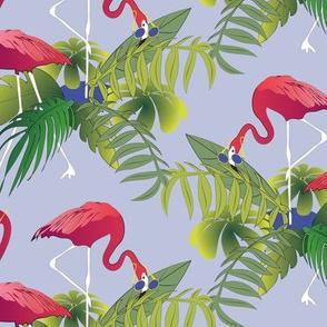 Flamingoes Fun
