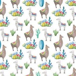 Llamas and Catci